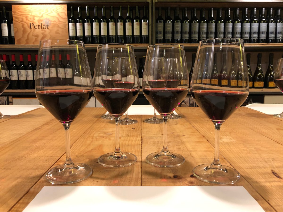 Tast de vins negres DO Montsant vs DOQ Priorat